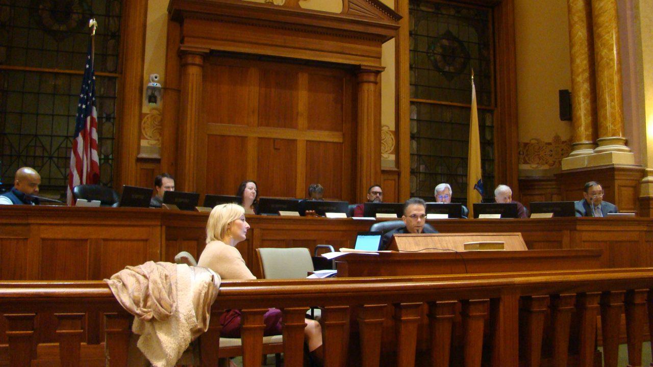 "Artists and Educators Urge Council to Vote ""Yes"" on  Arts Trust Fund Referendum, Council Votes to Limit Public Comment"