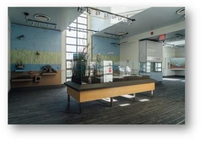 Liberty State Park Nature Center interior