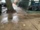 Jersey City sidewalk