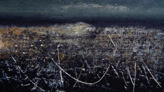 """Beaux Reves"" by Susan Evans Grove"